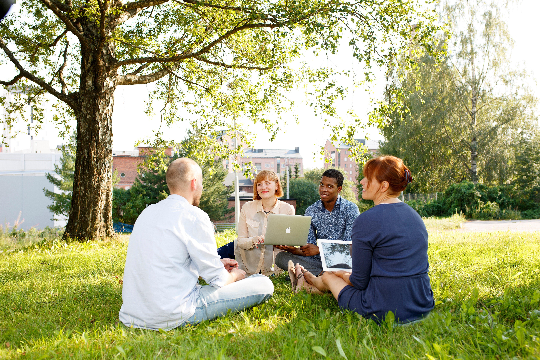 Kangas ryhmä nurmikolla työskentelemässä